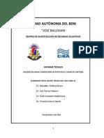 INFORME INSPECCION DE PECES EN RIO MAMORE- BENI.pdf