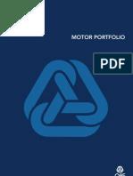 Motor Portfolio