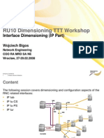 NSN RU10 Interface Dimensioning (IP Part)