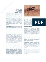 Atividade Da Dengue