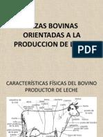 Razas Bovinas Orientadas a La Produccion de Leche