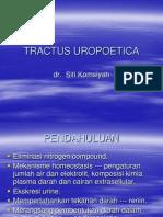 Histologi 2 - 06. UROPOETICA