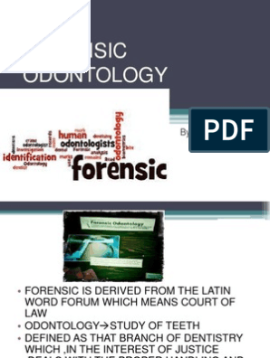 Forensic Dentistry Autopsy Human Tooth