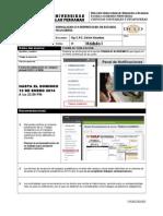 Trabajo Academico - Formulacion e Interpretacion de Eeff. - 2013-III