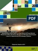 Transmision Oncocercosis en Condiciones de Campo Milton r. Cabrera