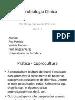 Microbiologia Clínica.PORTFOLIO