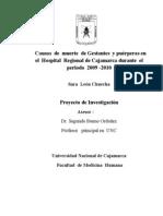 Proyecto de Investigacion Trabajo