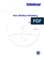 Near Wellbore Modeling