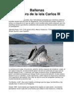 Chile, Ballenas de Magallanes, El Tesoro de Isla Carlos III