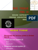 Nerve Intro Fbs 6 Mt Histo
