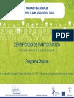 Certificado-Participación-Agencia Salud y Seguridad Europea- Programa Destres