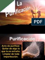 purificacion