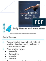 Body Tissues and Membranes