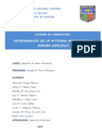 Actividad Metanogénica Máxima Especifica (3)