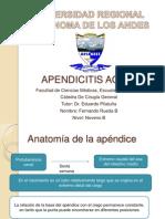 Apendicitis aguda Presentación