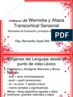 Afasia de Wernicke y Afasia Transcortical Sensorial