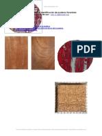 Manual Identificacion Maderas Forestales
