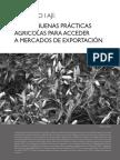 capÍtulo I ajÍ - BPA para mercados de exportación