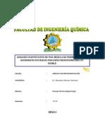 111648209 Informe de Espectrofotmetria