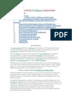 Causas y Efectos de Los Problemas Ambient Ales