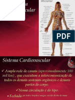 Sistema Cardiovascular - PH