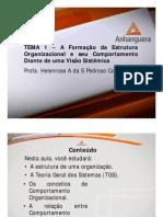 A1 Videoaula Online ADM1 Comportamento Organizacional Tema 1