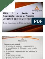 A1 Videoaula Online ADM1 Comportamento Organizacional Tema 5