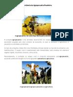 Importância da Agropecuária Brasileira