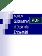 apoyo_gubernamental