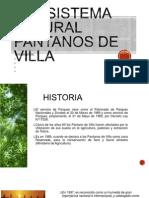Ecosistema Natural Pantanos de Villa 1