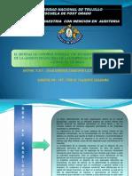 Proyecto Tesis Auditoria UNT
