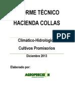 INFORME TÉCNICO_CLIMA Y CULTIVOS