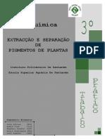 Pigmentos+de+Plantas+ +TLC (1)