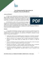 What is INSARAG - Spanish 2010.pdf