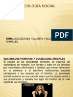 Sociedades Animales