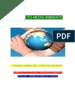 Proyecto Medio Ambiente(1)