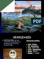 Giardiasis Cyclosporidiasis Trichominiasis