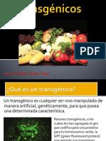 transgnicos-120221233914-phpapp01