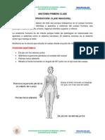 Anatomia 1_ Clase 2014