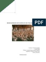 Bioseguridad en Planteles de Pollos Broilers