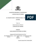 De Ocampo Castañeda - Thesis 2003.pdf