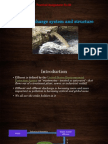Effluent Discharge System and Structure