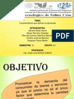 Expo-Caracteristicas de La Demanda.