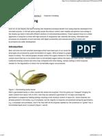 Enzymes in Brewing - Biokemisk Forening