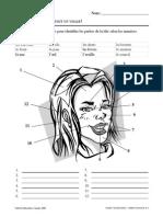 vocabulaires francais/ visages