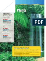 030 plants text book chapter