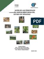Priorizacion Cadenas Veracruz 2008