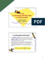 La_demanda_la_elasticidad.pdf