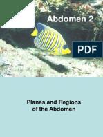 Abdomen 2 Anterior Abdominal Wall Part I (2005-2006)