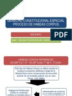PROCESO DE HABEAS CORPUS 05-07-2013.pptx